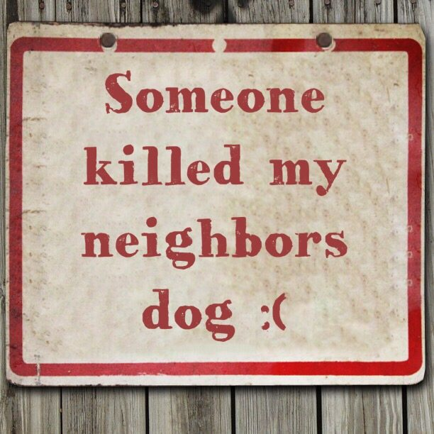 Someone killed my neighbors dog :(