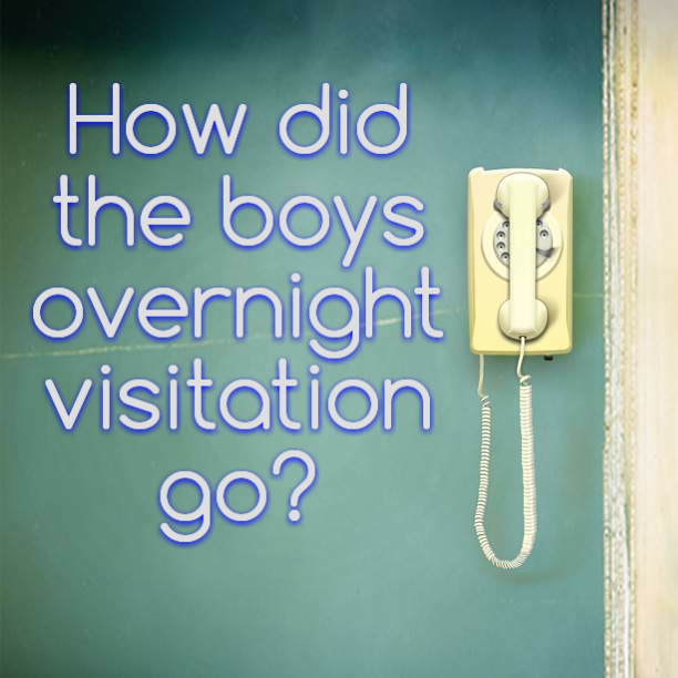 How did the boys overnight visitation go?