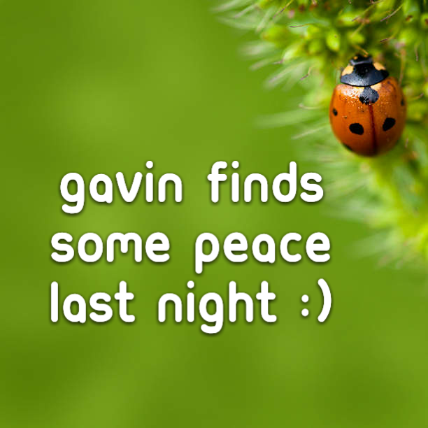 Gavin finds some peace last night :)
