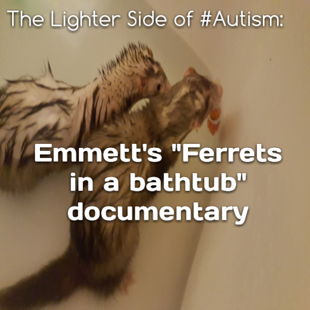 "The Lighter Side of #Autism: Emmett's ""Ferrets in a bathtub"" documentary"