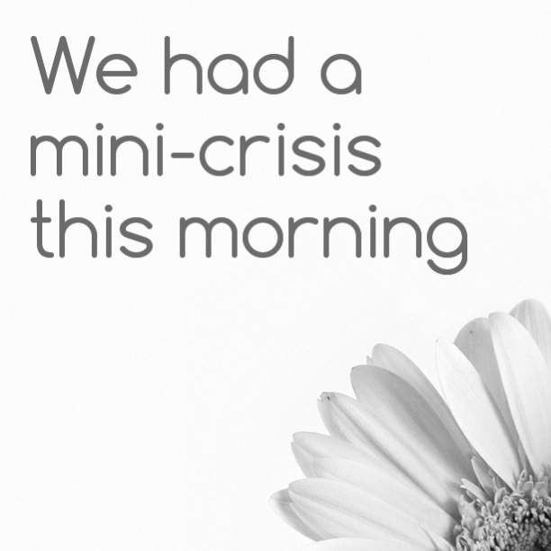 We had a mini-crisis this morning