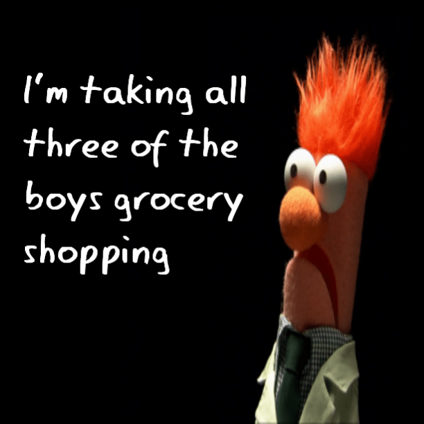 I'm taking all three of the boys grocery shopping
