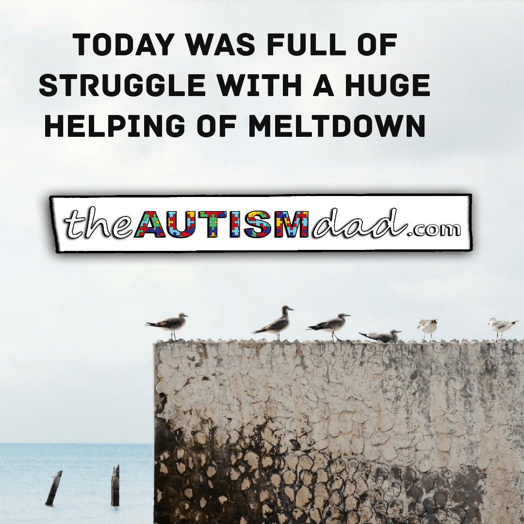 Today was full of struggle with a huge helping of meltdown