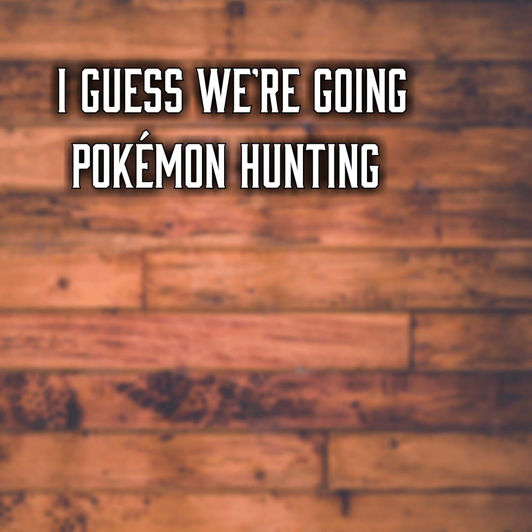 I guess we're going Pokémon hunting
