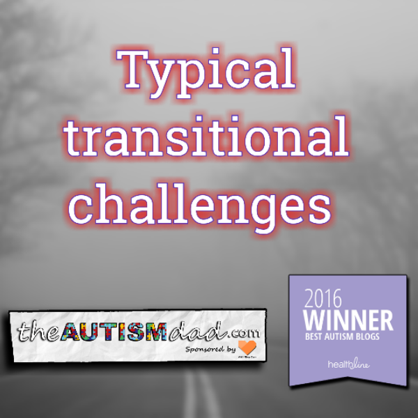 Typical transitional challenges