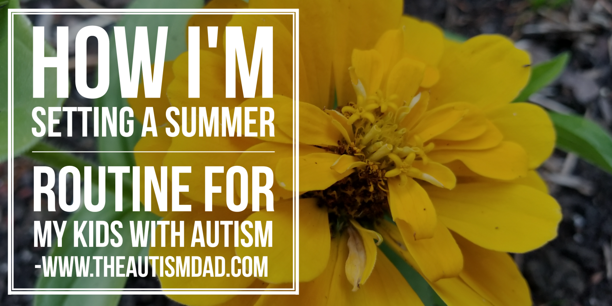 How I'm setting a summer routine for my kids with #Autism