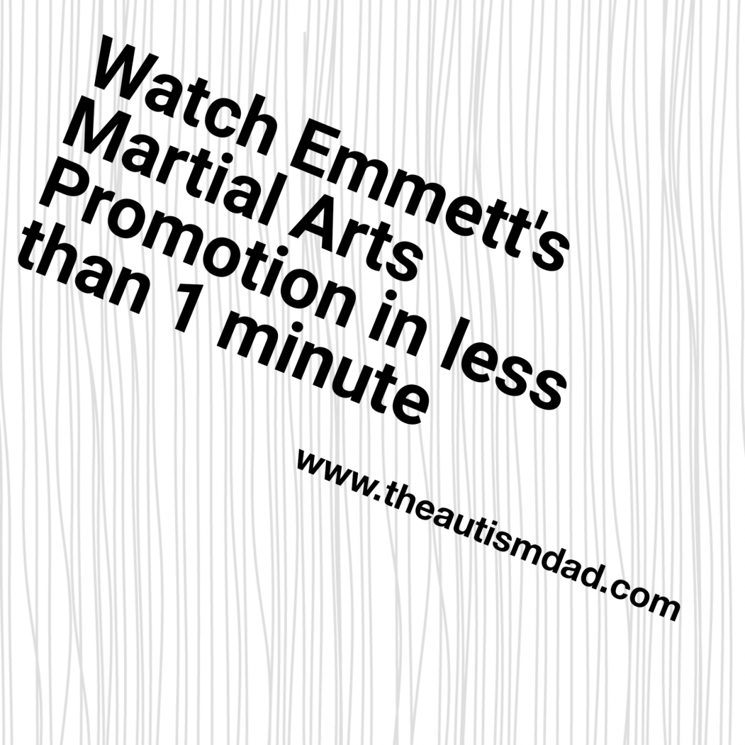 Watch Emmett's Martial Arts Promotion in less than 1 minute