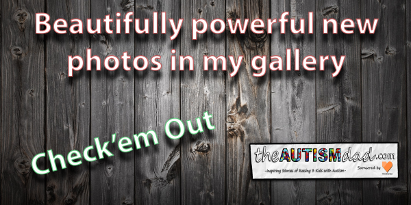 Beautifully powerful new photos in my gallery