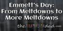Emmett's Day: From Meltdowns to More Meltdowns