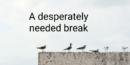 A desperately needed break