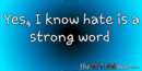 Yes, I know hate is a strong word