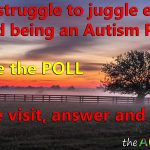 Do you struggle to juggle everyday life and being an Autism Parent?