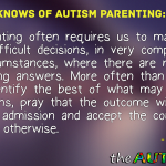 The Did You Knows of #Autism Parenting: The Price of Admission