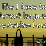 I feel like I have to speak 5 different languages in my #Autism house