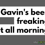 Gavin's been freaking out all morning