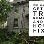 We have to get the tree removed and our house fixed