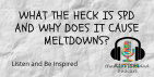What the heck is #SPD and why does it cause #meltdowns?